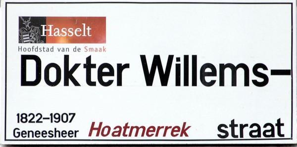 Straatnaambord Dokter Willemsstraat