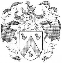 Familiewapen van den Dweye (uit: Limburgse families en hun wapen (1973), p. 119)