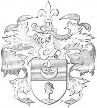 Familiewapen van der Hauweycken (uit: Limburgse families en hun wapen (1973), p. 124)